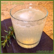 rosemary – st. germain slinger